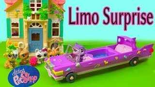 LPS Mommies Limo Surprise Part 56 Littlest Pet Shop Series Video Movie LPS Bobblehead Cookieswirlc
