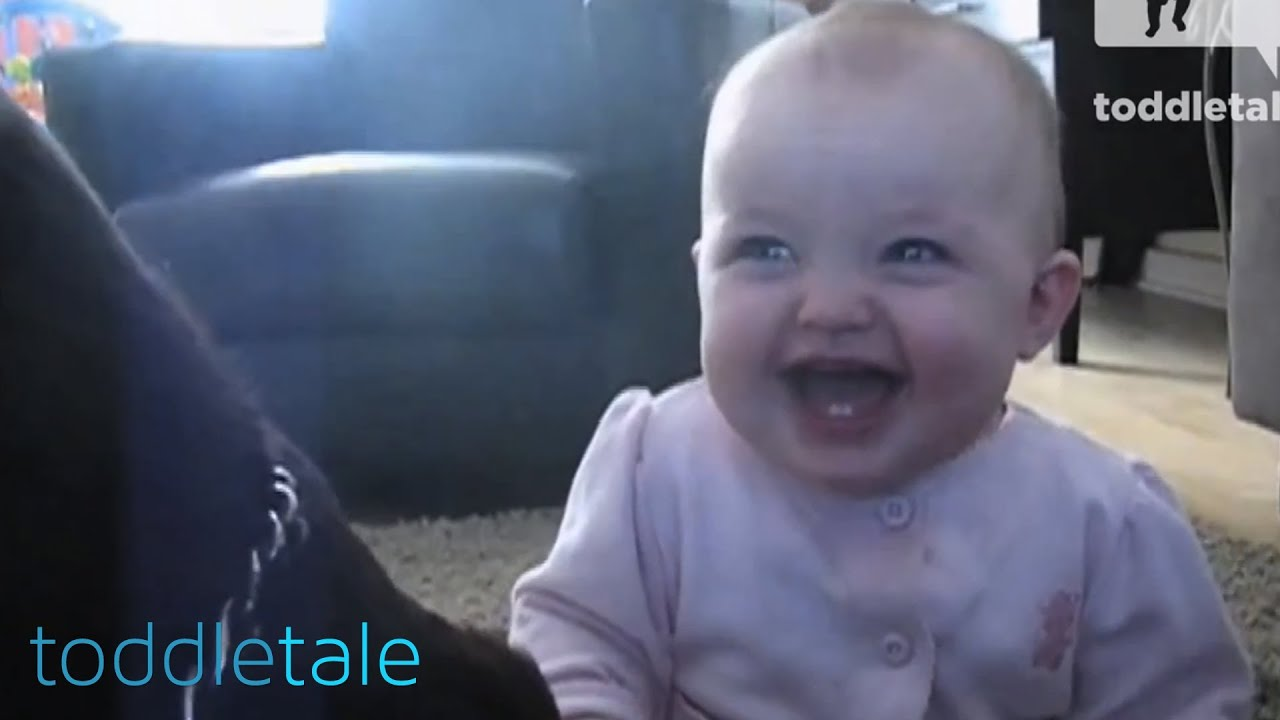 Baby Girl Laughing Hysterically At Dog Eating Popcorn Laughing Babies Toddletale Youtube