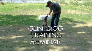 Place Training for your Dog in 3 Easy Steps  -  Gun Dog Training