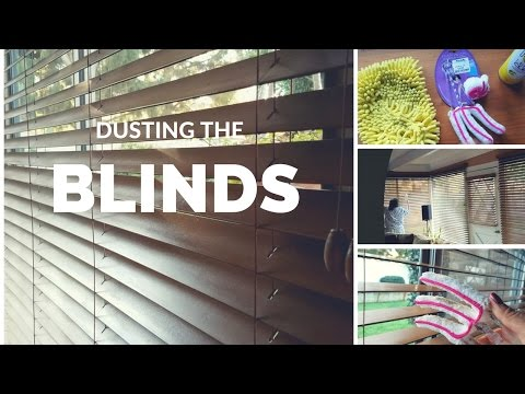 Dusting Blinds | House Cleaning
