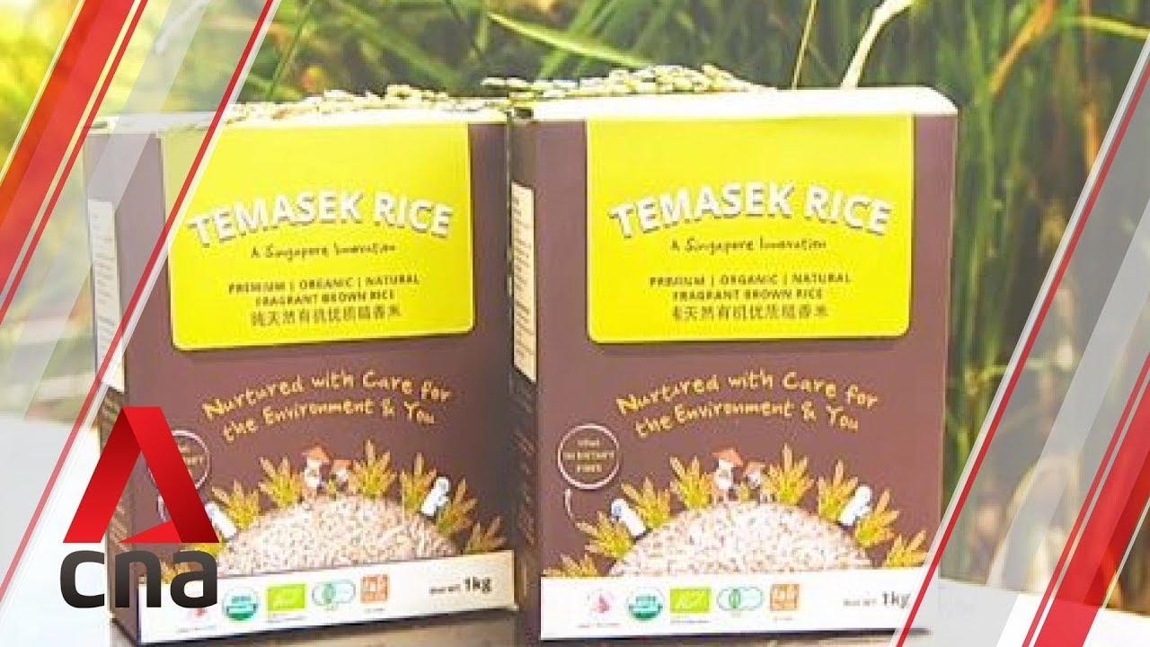 Temasek Rice granted Plant Varieties Protection