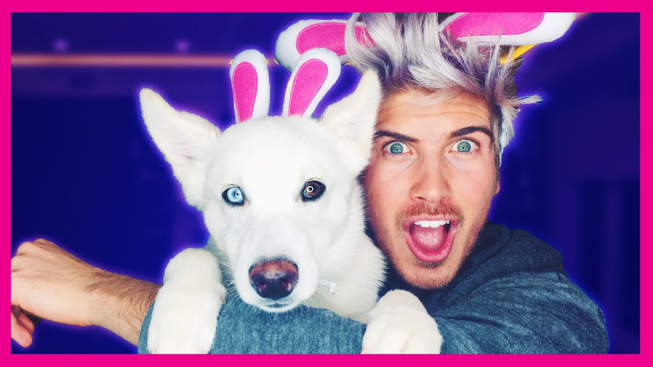 What Is Joey Graceffa S Dogs Name