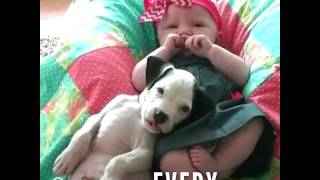 Little Girl And Pit Bull Have Loved Each Other Every Day Of Their Lives
