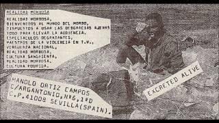 "Chards of Civilization 7"" Compilation 1995"