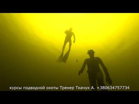 Подводная тренировка глубинные погружения на 14 метров с кофортом школа подводной охоты Ткачук А