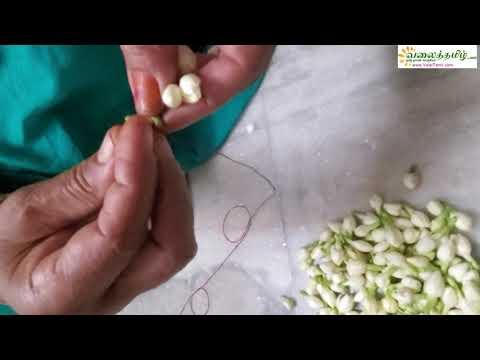 மல்லிகை பூ கட்டுவது எப்படி ?/How to string jasmine flower