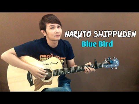 Ikimono Gakari Blue Bird Naruto Shippuden  Nathan Fingerstyle  Guitar  OST Theme Song