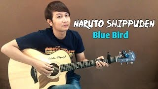 (Ikimono Gakari) Blue Bird [Naruto Shippuden] - Nathan Fingerstyle | Guitar Cover OST Theme Song