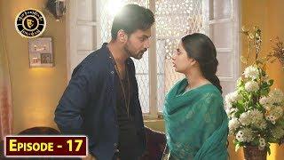 Visaal Episode 17 - Top Pakistani Drama