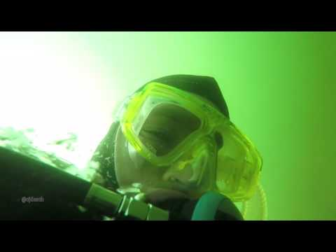 Illegal Scuba Diving for Oysters in the Cheasepeak Bay