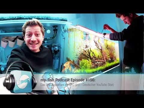 my-fish.org - Das XXL Aquarium im UFO (izzi - Deutscher YouTube Star)