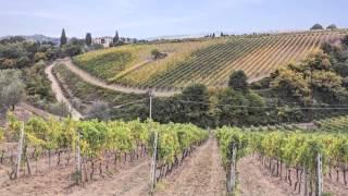 видео Вино Брунелло ди Монтальчино