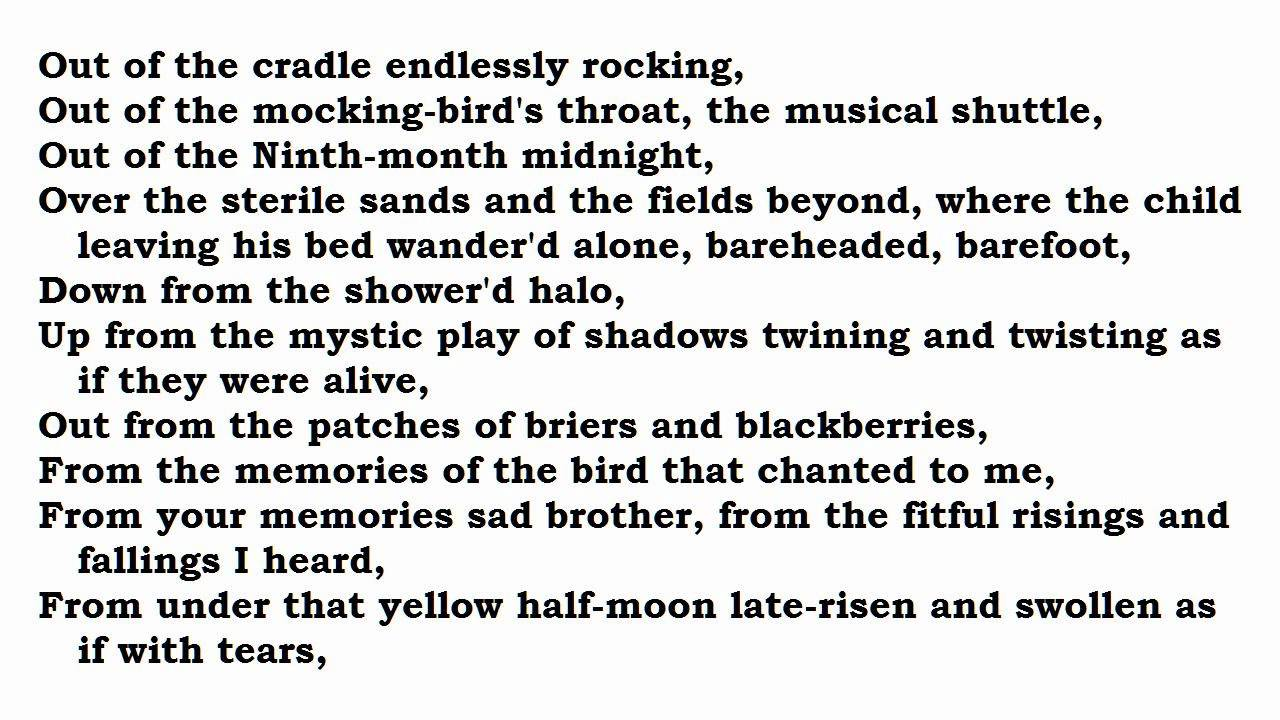 out of the cradle endlessly rocking summary