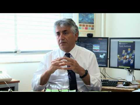 FAO's Food Outlook and agricultural commodity market trends