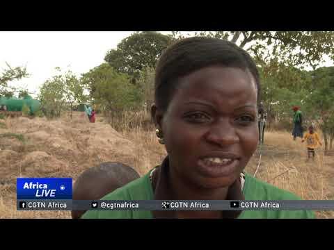 Zimbabwe's journey one year after Mugabe