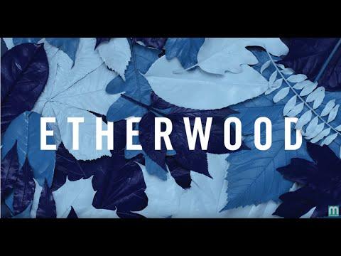 Etherwood - Breathe It In