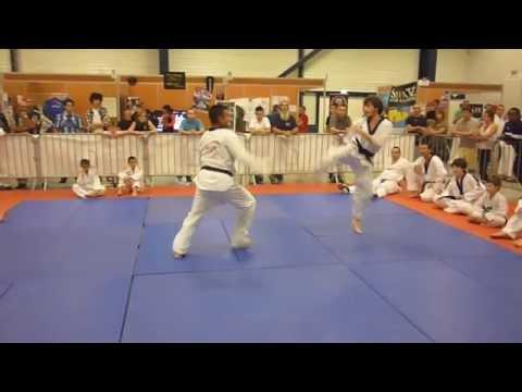 Cours Adultes de Taekwondo