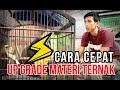 Cara Ternak Kenari Supaya Bisa Up Grade Materi Ternak Rio Blok M Canary  Mp3 - Mp4 Download