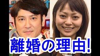 ココリコ田中直樹さんの驚愕の離婚理由!原因は奥さん小日向しえさんの...