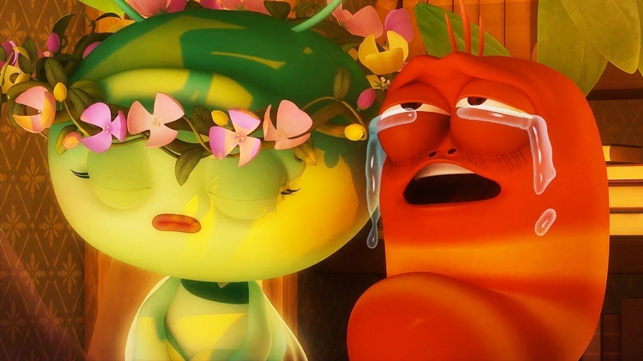 LARVA - YOUNG LOVE | Cartoon Movie | Cartoons For Children | Larva Cartoon | LARVA Official