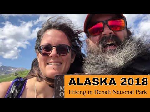 Alaska 2018 - 16 [Hiking in Denali National Park]