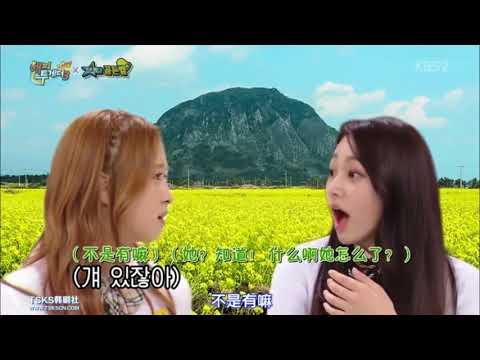 WJSN Dayoung & Gugudan Mina Speaking Jeju Dialect(Happy Together EP513)