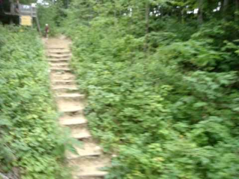 Treetop Trekking Zipline at Horseshoe resort