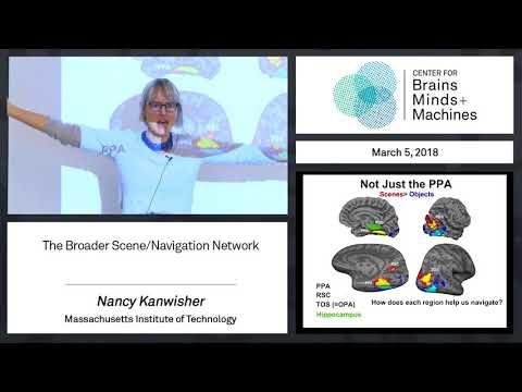 5.5 - The Broader Scene Navigation Network