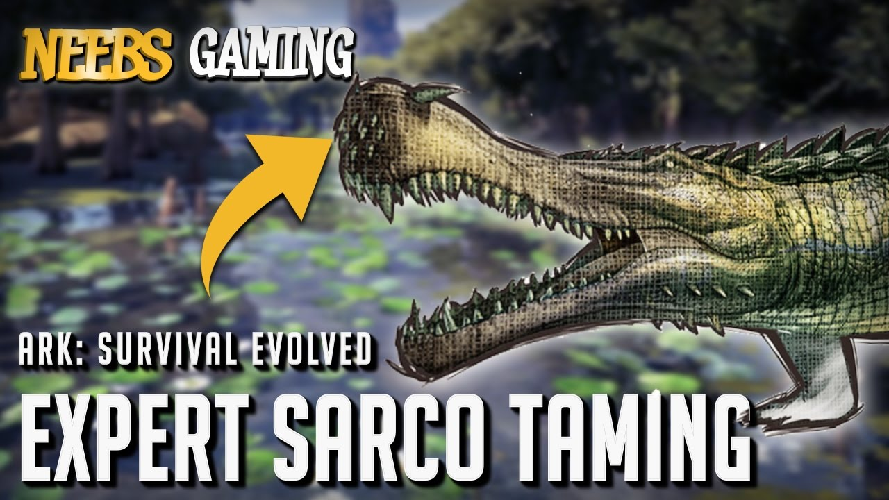 ark survival evolved expert sarco taming youtube