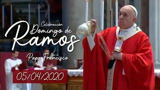 Celebración Domingo De Ramos Con El Papa Francisco Desde El Vaticano