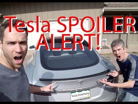 Tesla SPOILER ALERT! Window Tint! Model 3 News!