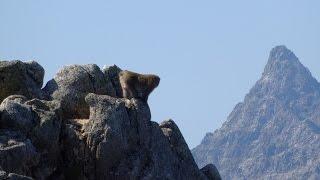 こんな快晴無風の北アルプス燕岳から大天井岳を歩いて山を好きにならない人はいない