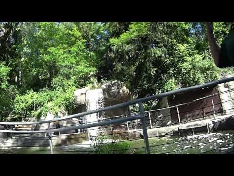 John Ball Park Zoo September 2016