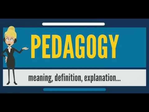 What is PEDAGOGY? What does PEDAGOGY mean? PEDAGOGY meaning, definition & explanation