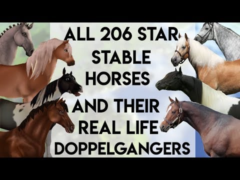 All 206 Star Stable Horses And their Real Life Matches
