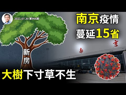 南京疫情蔓延15省,连锁反应更严重!大树底下寸草不生,保房价也有大坑(文昭谈古论今20210730第966期)