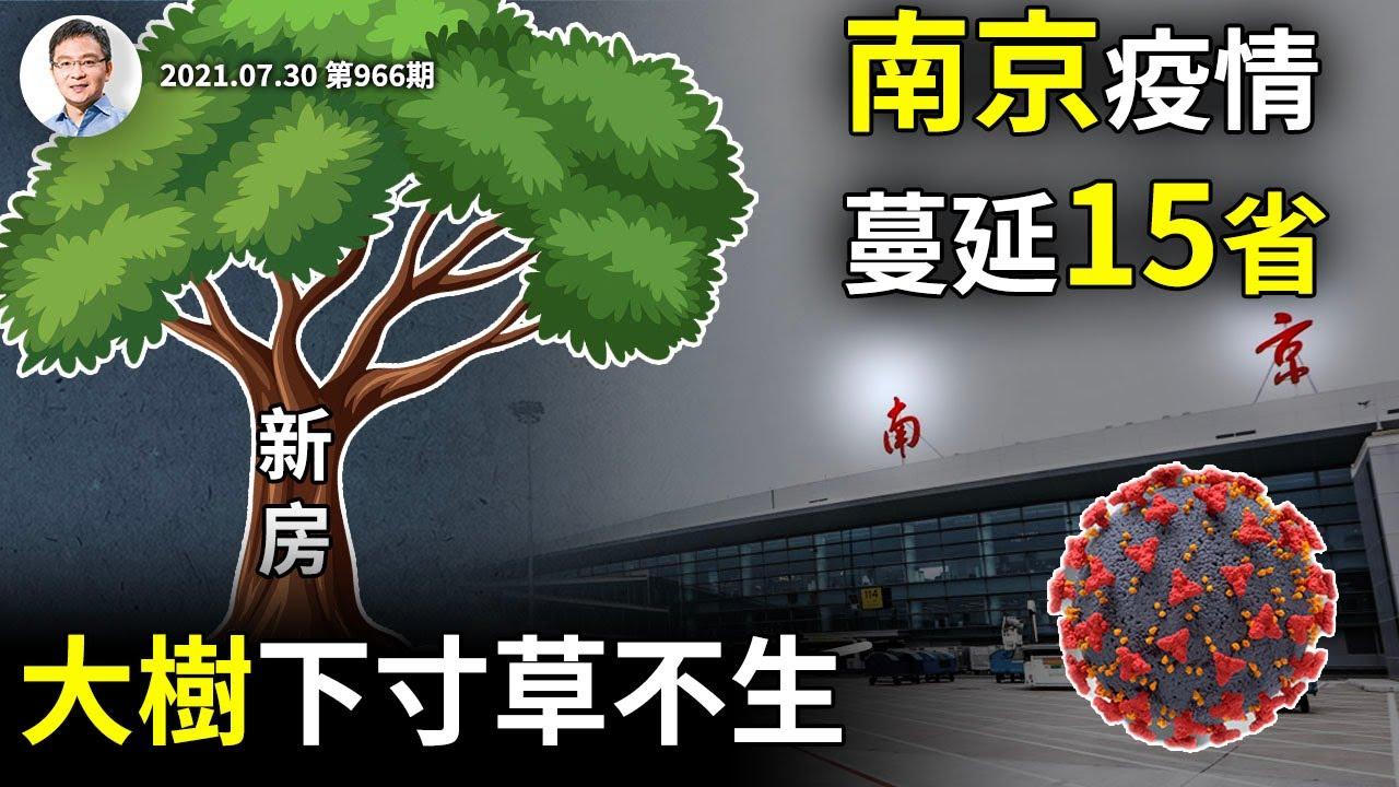 南京疫情蔓延15省,連鎖反應更嚴重!大樹底下寸草不生,保房價也有大坑(文昭談古論今20210730第966期)