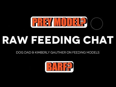 Raw Feeding Chat   Dog Dad & Kimberly Gauthier On Raw Feeding Models