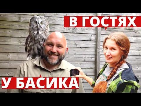 Сова Басик(неясыть) и Ника@Yoll в Коломенское