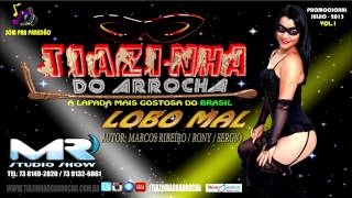 Tiazinha Do Arrocha - Lobo Mal ( Lançamento CD Vol.1 2015 )