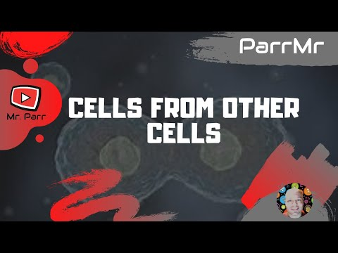 Cells From Other Cells Song