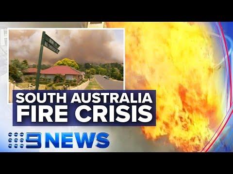 SA Fires: 'Complex of fires' raging on Kangaroo Island   Nine News Australia