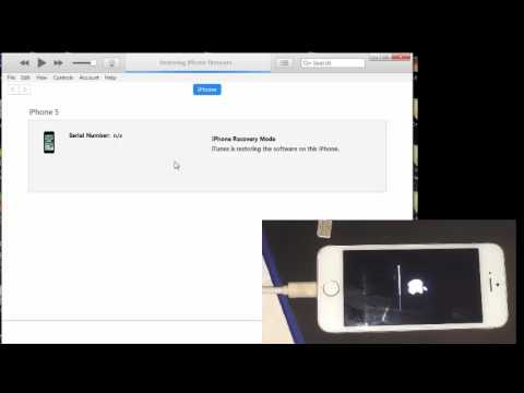 how to fix iphone 5 screen coming off