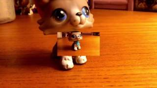 lps she a bad thing mv