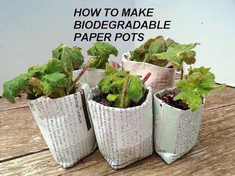 Diy Best Biodegradable Newspaper Pots Plant Seeds Or