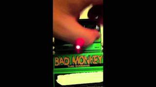 Digitech Bad Monkey Bass Demo