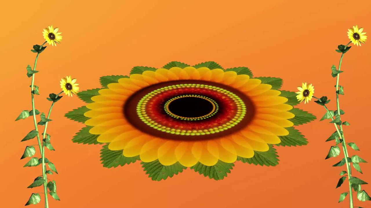 Flower Animated Video In Full Hd Youtube