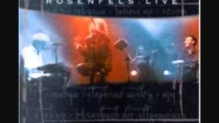 Rosenfels Live - Waiting for the Daylight