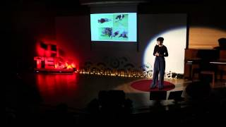 Setting mathematics education in motion | Panorea Baka | TEDxUniversityofMacedonia