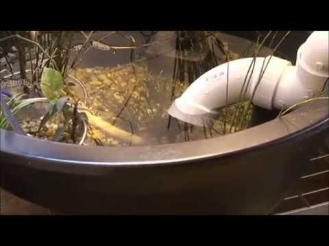 clear pvc water bridge for two indoor fish ponds